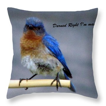 Our Own Mad Blue Bird Throw Pillow by Betty Pieper