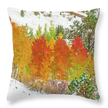 Our Winter Begins Around Mid October.  Throw Pillow