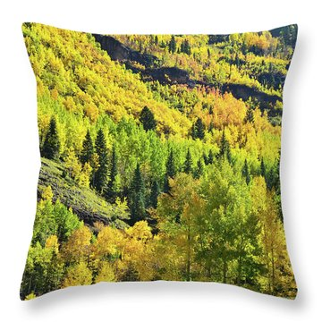 Throw Pillow featuring the photograph Ouray Canyon Switchbacks by Ray Mathis