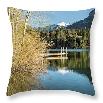 Ouray County Postcard Scene Throw Pillow