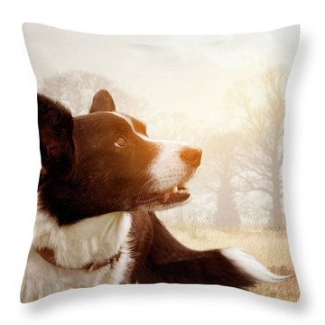Out And About Throw Pillow