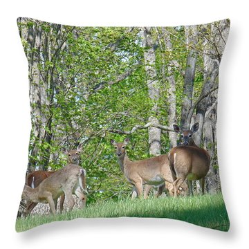Out For A Walk Throw Pillow by Charlotte Gray