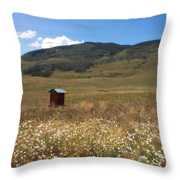 Throw Pillow featuring the photograph Out House by Mary-Lee Sanders