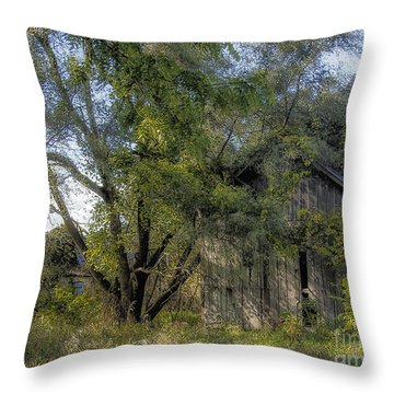 Out In The Back 40 Throw Pillow