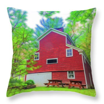 Out In The Country Throw Pillow by Jim Lepard