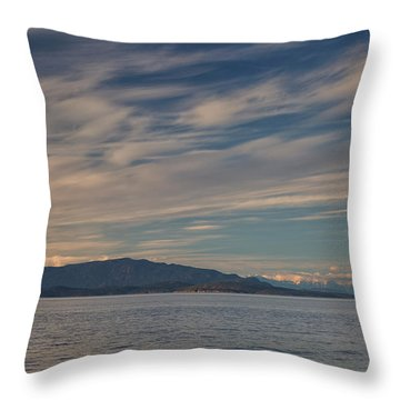 Out Like A Lamb Throw Pillow by Randy Hall
