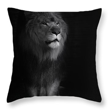 Out Of Darkness Throw Pillow