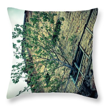 Out Of Darkness  Throw Pillow by Off The Beaten Path Photography - Andrew Alexander