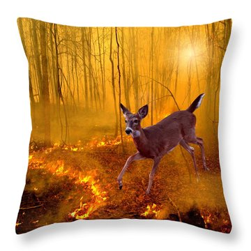 Out Of Egypt Throw Pillow by Bill Stephens