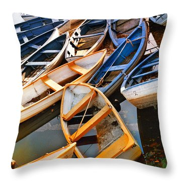 Out Of Season Throw Pillow by Robert Lacy
