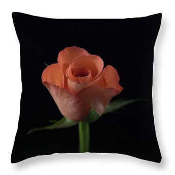 Out Of The Black Throw Pillow