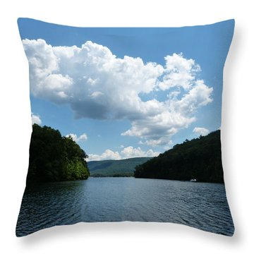 Out Of The Cove Throw Pillow by Donald C Morgan