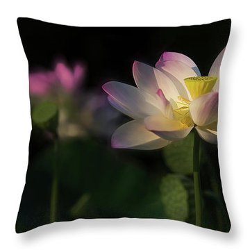 Out Of The Mud Throw Pillow
