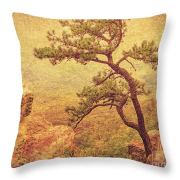 Out Of The Rock Throw Pillow