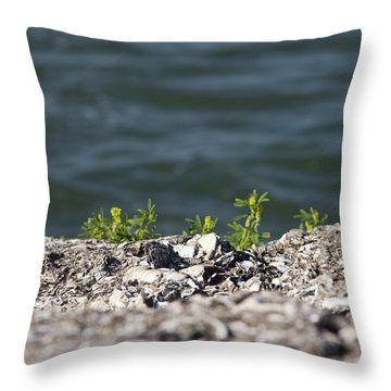 Out Of The Stone Throw Pillow