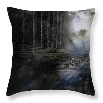 Out Of The Storm Throw Pillow by Gray  Artus