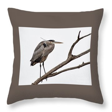 Out On A Limb Throw Pillow by Tamera James
