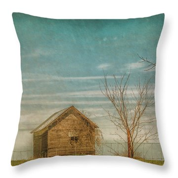 Out On The Farm Throw Pillow