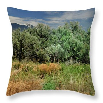 Out On The Mesa 1 Throw Pillow
