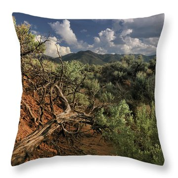 Out On The Mesa 2 Throw Pillow