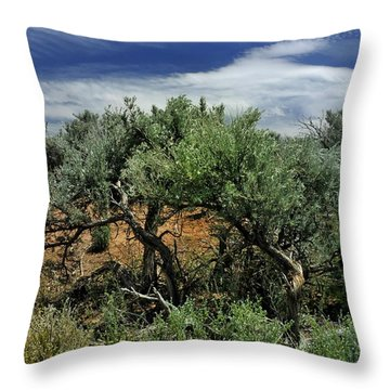 Out On The Mesa 3 Throw Pillow