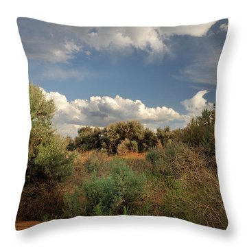 Out On The Mesa 4 Throw Pillow