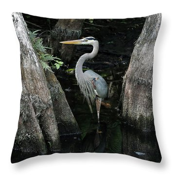 Out Standing In The Swamp Throw Pillow