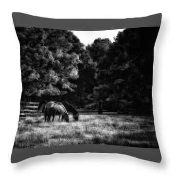 Throw Pillow featuring the photograph Out To Pasture Bw by Mark Fuller