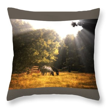 Throw Pillow featuring the photograph Out To Pasture by Mark Fuller