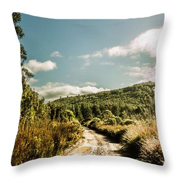 Outback Country Road Panorama Throw Pillow