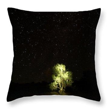 Outback Light Throw Pillow