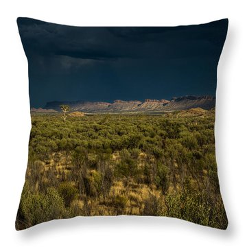 Outback Storm Throw Pillow