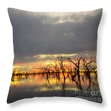 Outback Sunset Throw Pillow by Blair Stuart