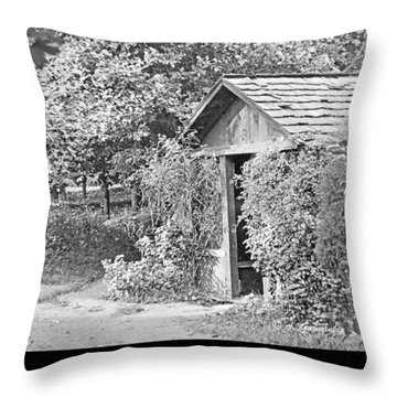 Throw Pillow featuring the photograph Outbuilding, Shed Arden Delaware 1919 by A Gurmankin