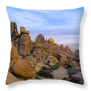 Outer Limits Pano View Throw Pillow