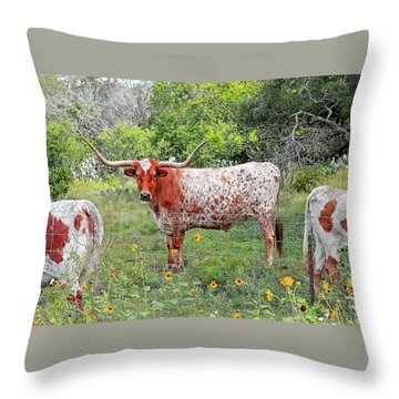 Outflanked Throw Pillow