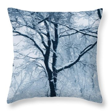 Outside My Window Throw Pillow by Linda Sannuti