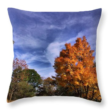 Throw Pillow featuring the photograph Outstanding In My Field...lol by John S