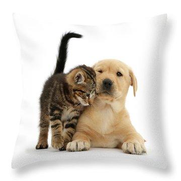 Over Friendly Kitten Throw Pillow
