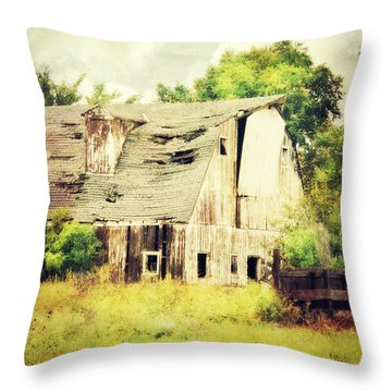 Throw Pillow featuring the photograph Over Grown by Julie Hamilton