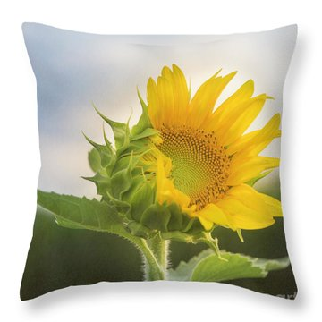 Over My Head Throw Pillow