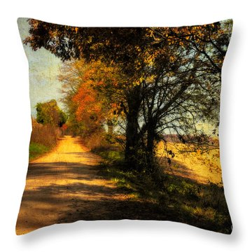 Over My Shoulder Throw Pillow by Lois Bryan