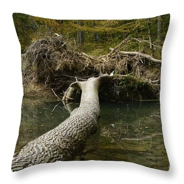 Over On Clover Throw Pillow by Randy Bodkins