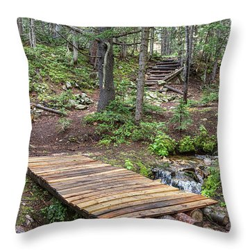 Throw Pillow featuring the photograph Over The Bridge And Through The Woods by James BO Insogna