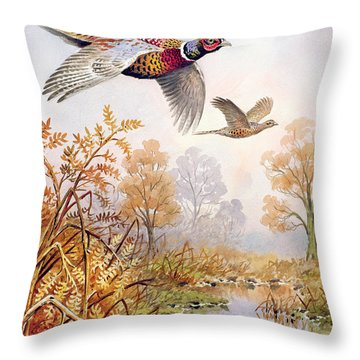 Over The Fen Throw Pillow