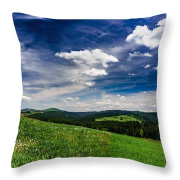 Throw Pillow featuring the photograph Over The Green Hills by Dmytro Korol