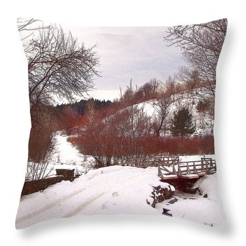 Throw Pillow featuring the photograph Over The River by Betsy Zimmerli