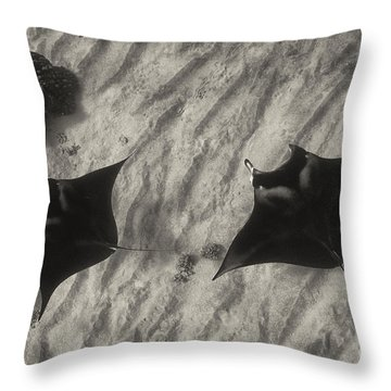 Throw Pillow featuring the photograph Over The Sand by Aaron Whittemore