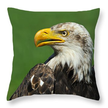 Over The Shoulder Throw Pillow by Tony Beck