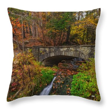 Over The Stream Throw Pillow by Mark Papke
